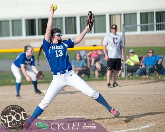 col-0shaker softball-0303