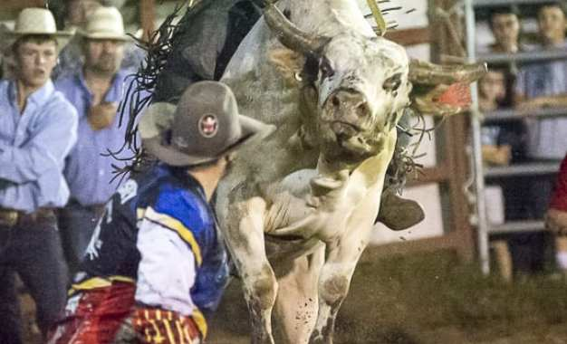 SPOTTED: Double M Professional Rodeo Aug 24 – USA vs Team International Bull Riders