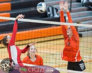 beth-guilderland volleyball-7563