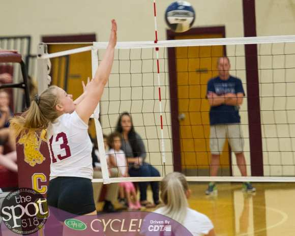 colonie-shaker v'ball-3595