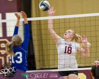 colonie-shaker v'ball-4041