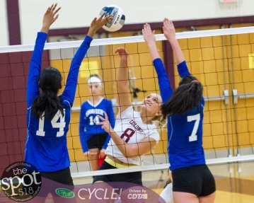 colonie-shaker v'ball-4472
