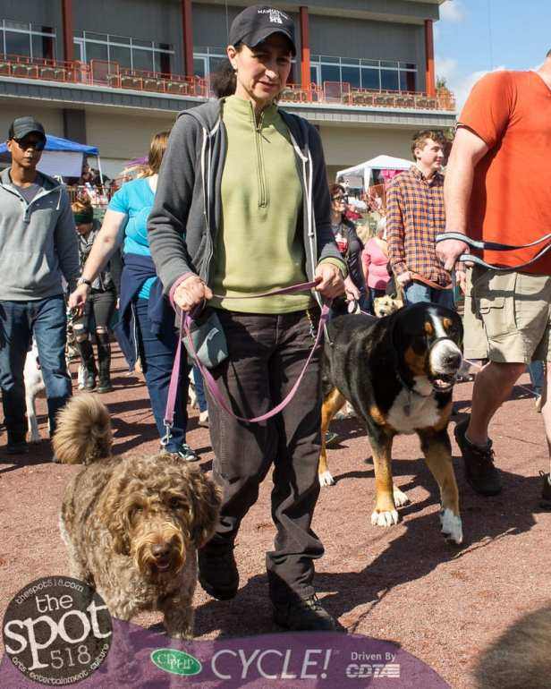 paws in the park-0531