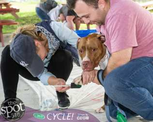 paws in the park-0850