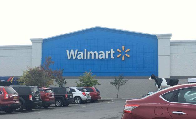 Walmart, police struggle with shoplifters