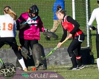 field hockey-9508