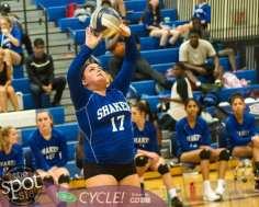 shaker-g'land volleyball-5719
