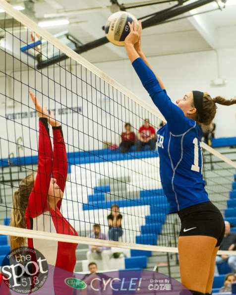 shaker-g'land volleyball-5784