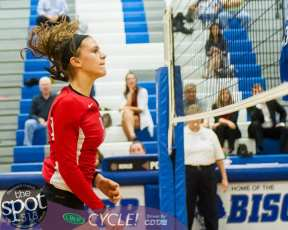 shaker-g'land volleyball-5965