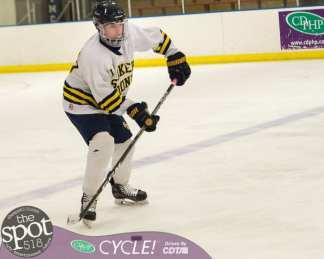 beth hockey-0329