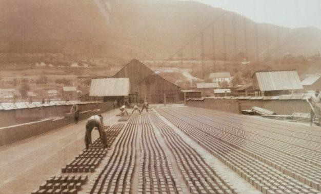 DISCOVER COEYMANS, SELKIRK & FEURA BUSH: Coeymans has a long history of brickmaking