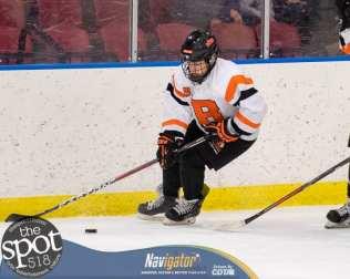 beth hockey-5968