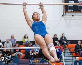 gymnastics-0017