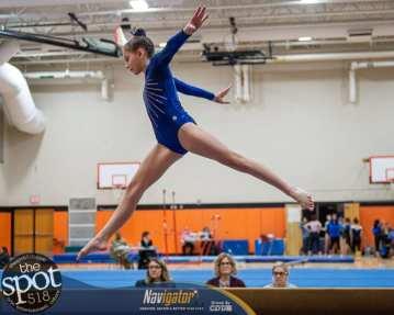 gymnastics-4631