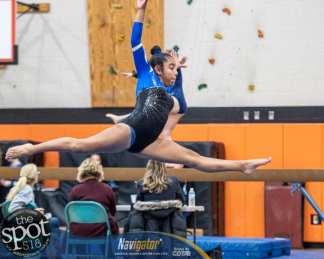 gymnastics-9716