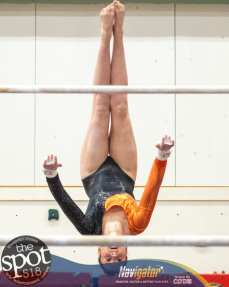 gymnastics-1747