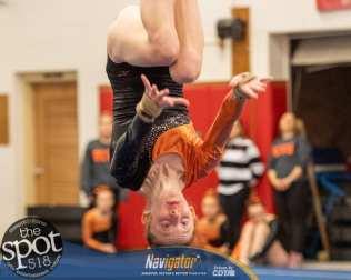 gymnastics-2365