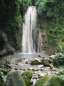 St Lucia - Botanical Gardens waterfalls