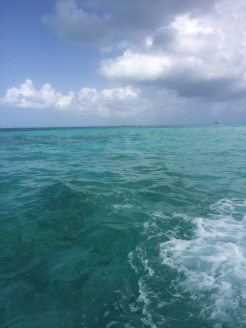 Grand Cayman Vacation: Recommendations on accomodations, where to eat and where to play | spotofteadesigns.com