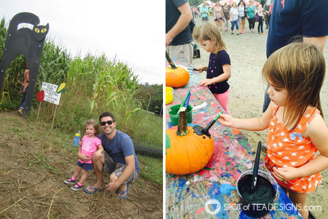 12+ great places for toddlers in the greatest central new jersey area. Terhune Orchards in Princeton NJ #toddlerlife #newjersey | spotofteadesigns.com