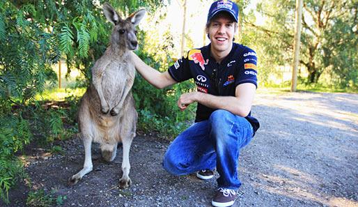 Sebastian Vettel off the Track