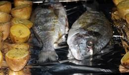 Smaczna ryba na obiad - dorada