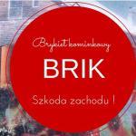 Brykiet Kominkowy Firmy BRIK – Omijać Szerokim Łukiem !