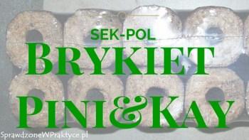 Brykiet drzewny Pini&Kay z firmy SEK-POL