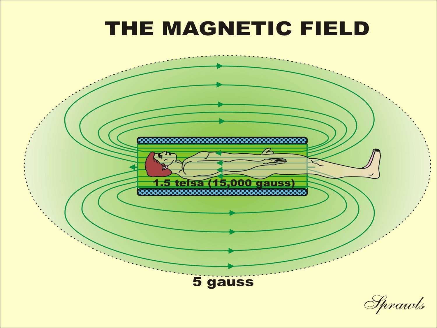 hight resolution of the magnetic field produced by superconducting magnets