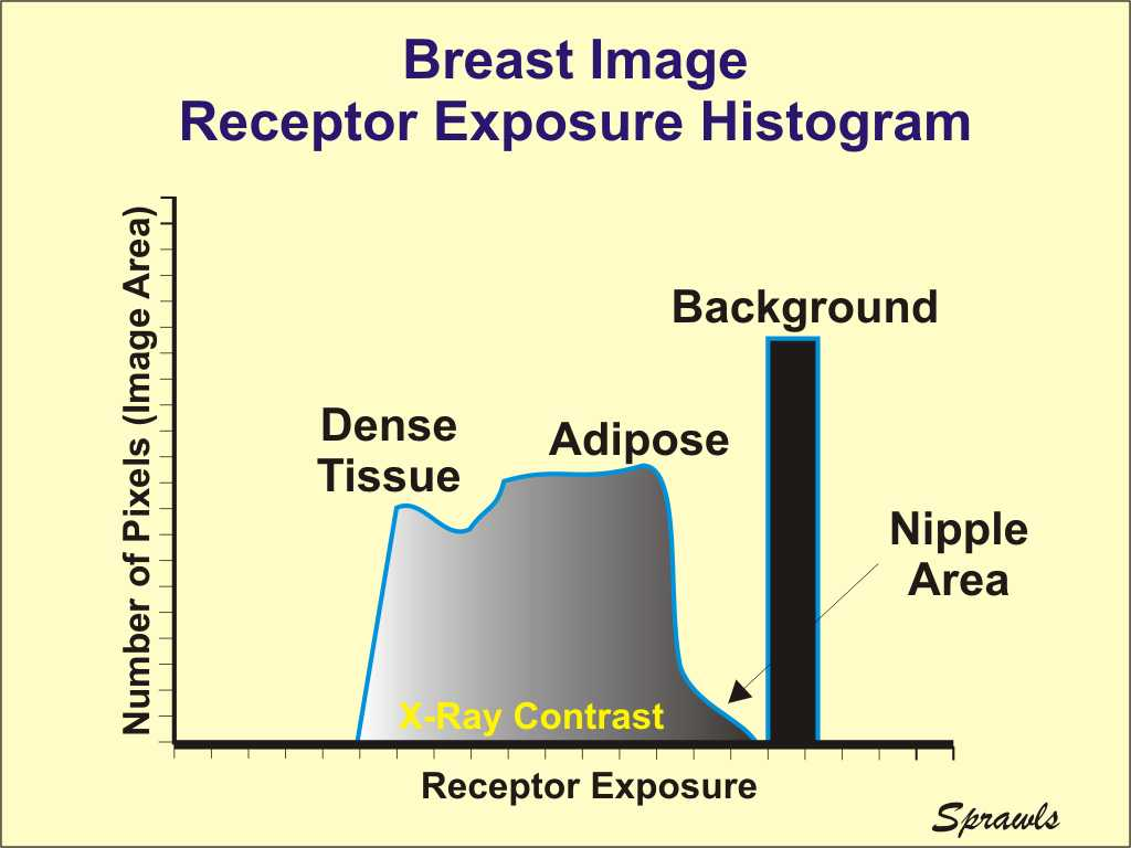 hight resolution of as the x ray beam exits the breast it contains an image in the form of different levels of exposure produced by the variation in penetration through the
