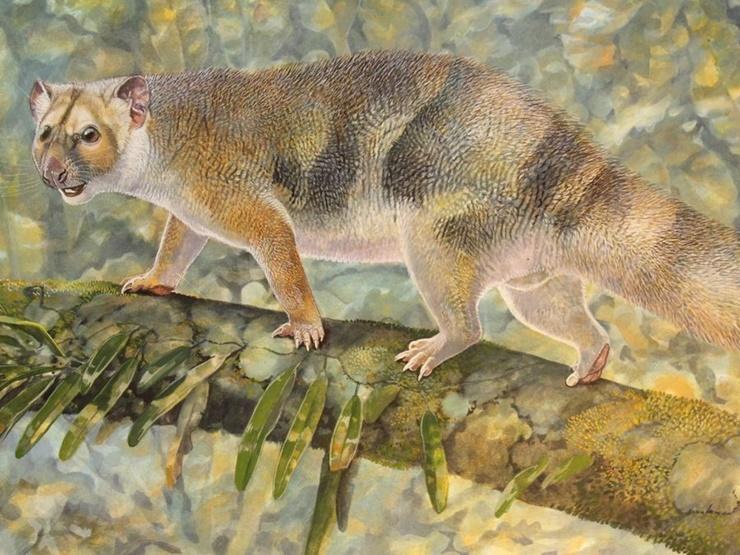 Micro lion Sir David Attenborough