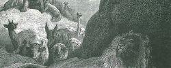 Sich in die Höhle des Löwen wagen - © Wikipedia