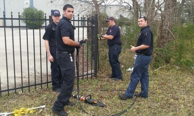 Spring Resident & Local Firefighters Rescue Deer Stuck In Fence