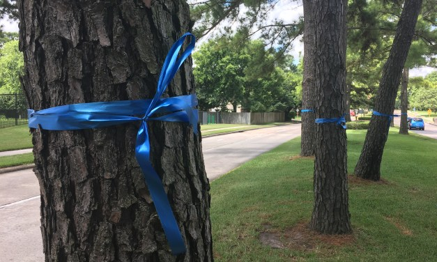 Homeowners Association Says Blue Memorial Ribbons Must Come Down