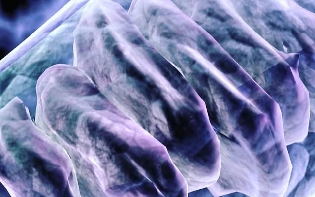 Bioenergetics, Holistic Health, and Allopathic Medicine