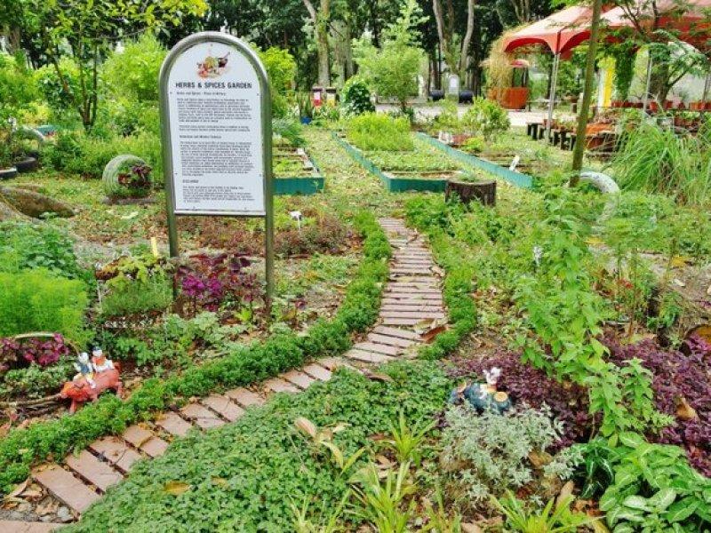 Chinese Garden 44