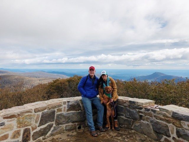 Dog Friendly Travel Tips Shenandoah National Park