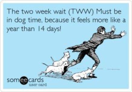 Two Week Wait Meme