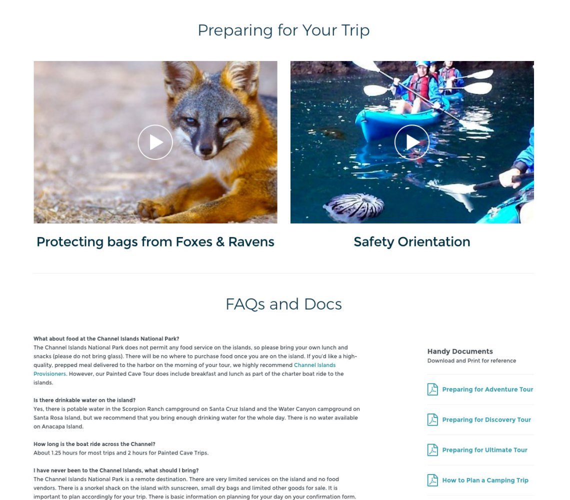 best travel tourism website design