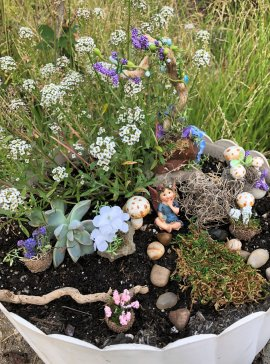 Fairy Garden Kits by Sprouted Dreams