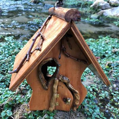 The Funky Fairy House