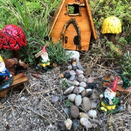 Complete Outdoor Gnome Garden handmade by Sprouted Dreams (10)