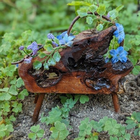 Floral Blue Fairy Bench with live edge handmade by Sprouted Dreams