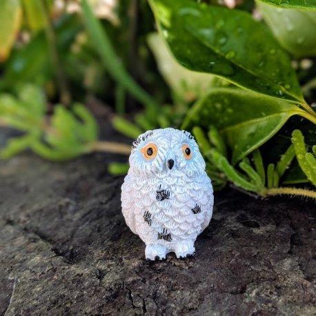 Snowy Owl5