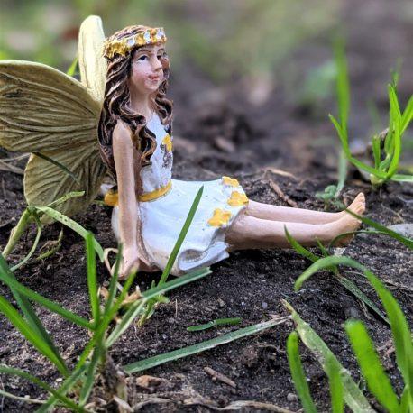 Honey Fairy6