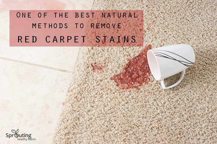 Red Carpet Stains Sprouting Healthy Habits