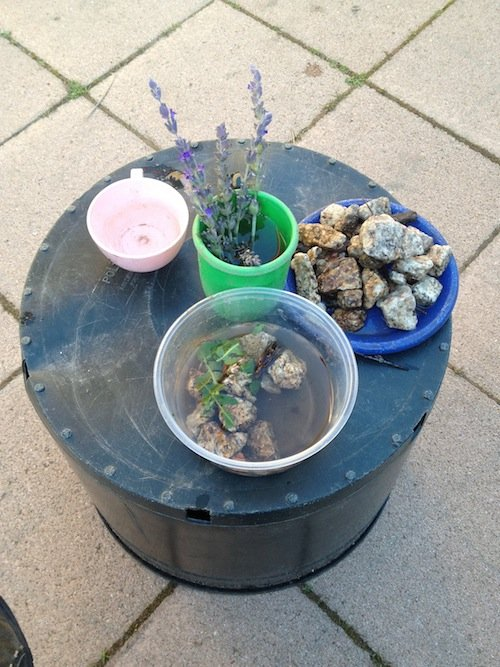 A table setting of mud pies made with water, rocks and plants.