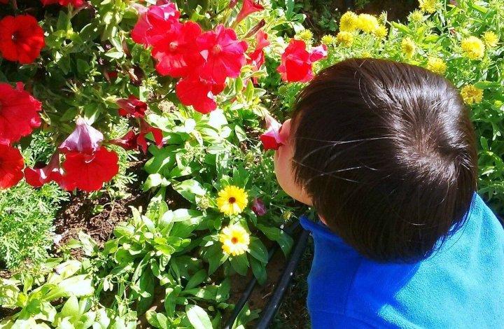 Spring Songs for Kids