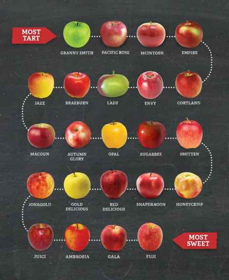 Image result for types of apples