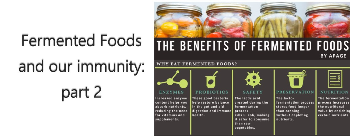 Fermented Foods and our Immunity – part 2